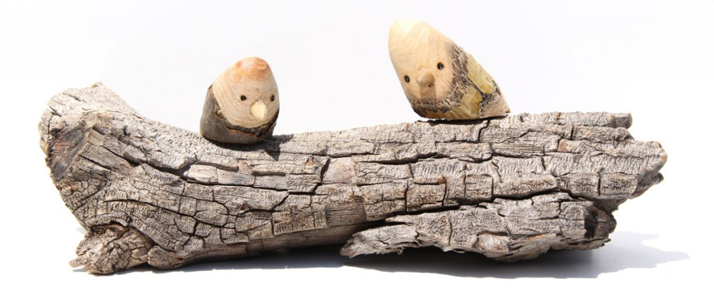 Two Birds Mounted on Checked Driftwood